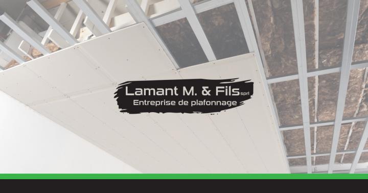 Besoin d'un professionnel pour l'habillage de votre plafond ?