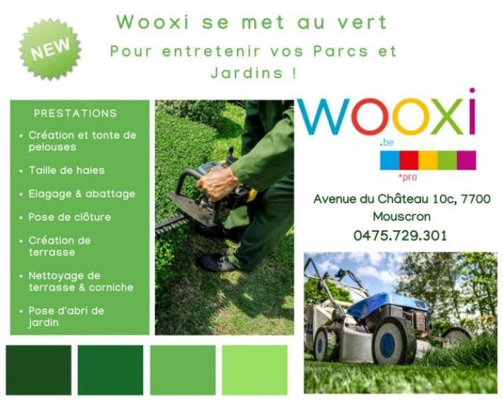 La branche verte de Wooxi