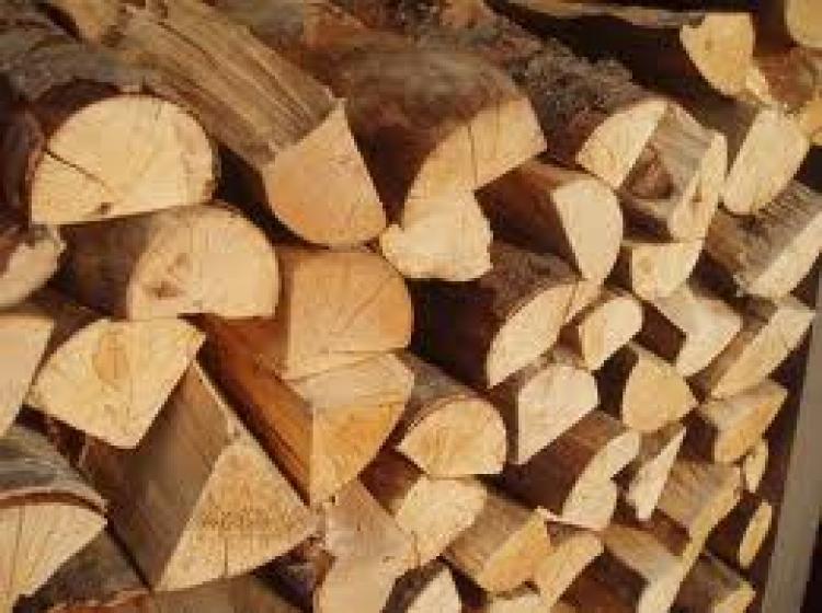 Quel bois choisir pour le chauffage au bois for Quel peinture pour le bois