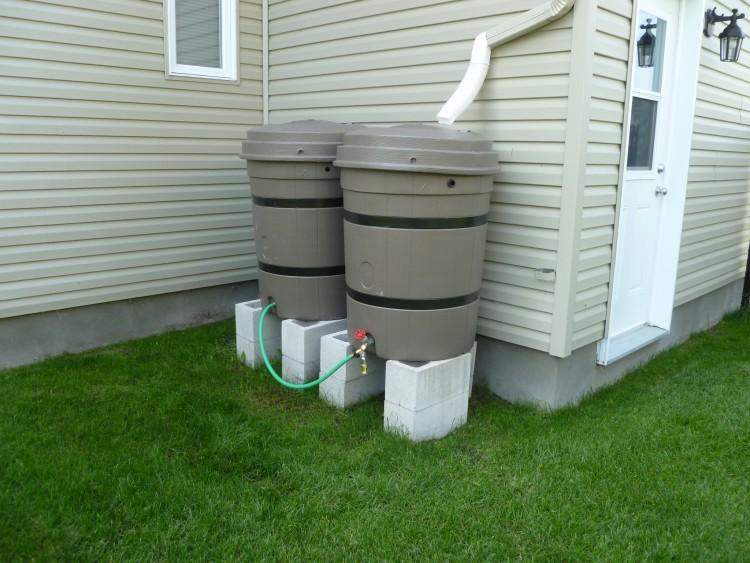 Jardinage : pourquoi et comment utiliser un récupérateur d'eau ?