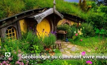 Géobiologie ou comment vivre mieux dans son habitat ?