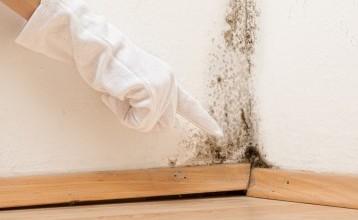 Des problèmes d'humidité ? Connaissez-vous la peinture anti-humidité ?
