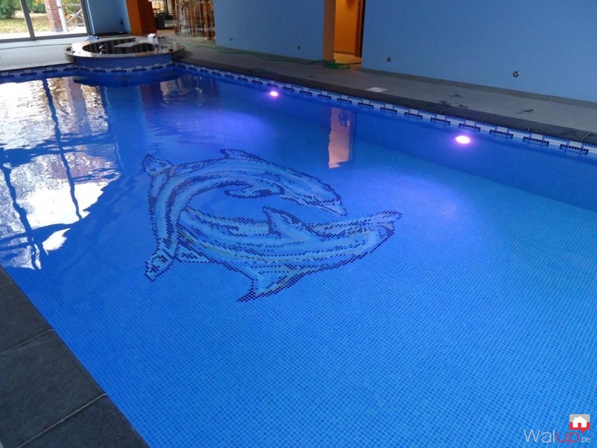 Construction d 39 une piscine int rieure par pool conception sprl for Conception piscine