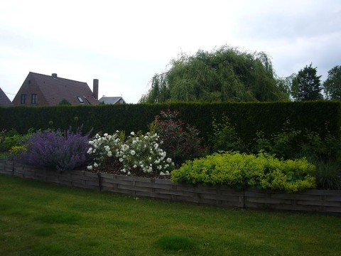 Entretien d 39 un jardin par ld jardin for Recherche entretien jardin