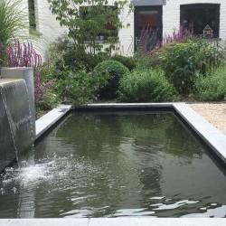 Petite pièce d'eau dans un jardin de ville aménagé en 2015